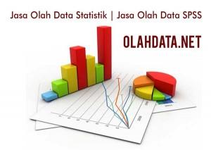 Olah Data SPSS   Jasa Olah Data SPSS
